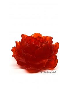 Jabon Sho Yu Rojo